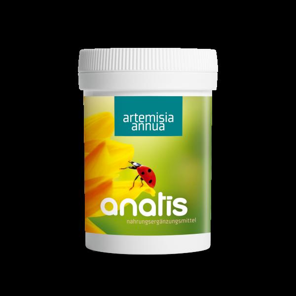 Artemisia annua 90 Kps