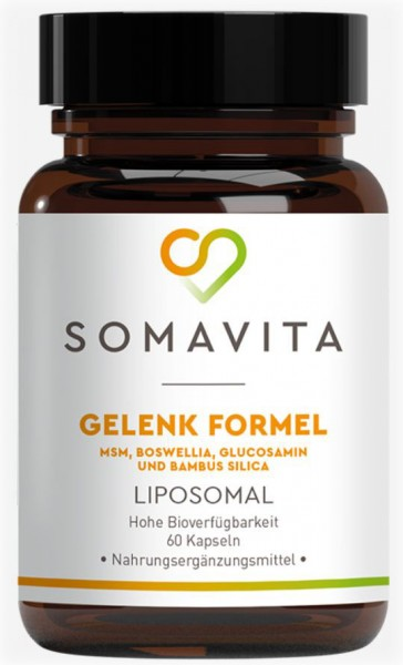 Liposomale Gelenk Formel 60 Kps